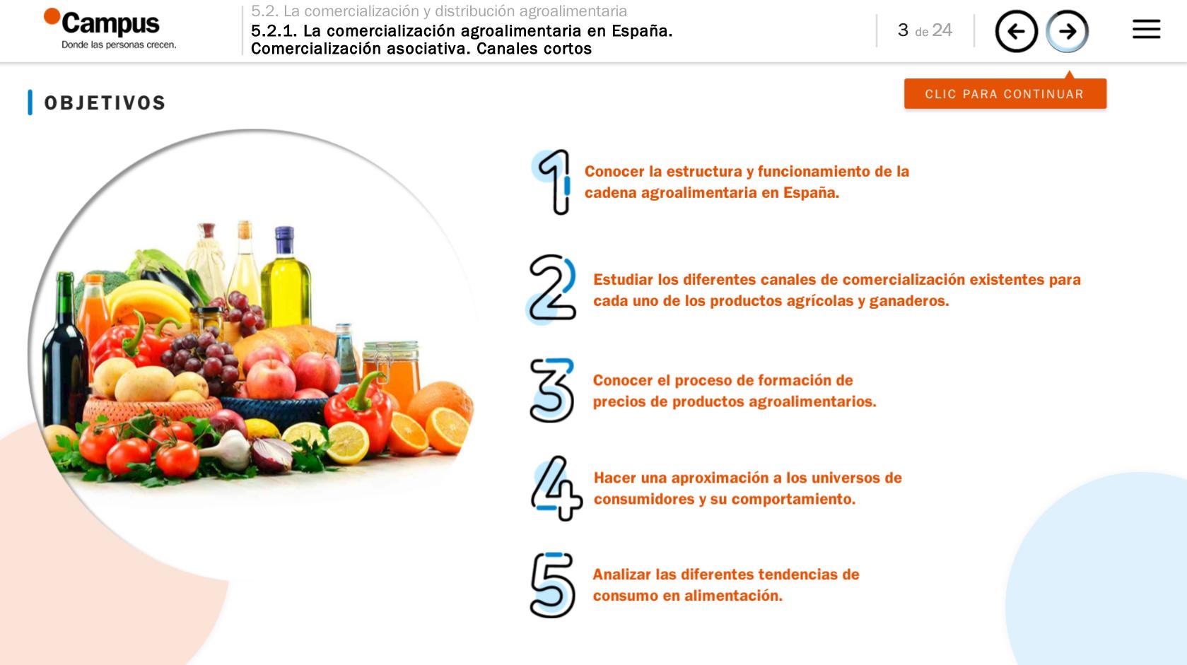 Captura de pantalla de los contenidos e-learning para Lafer